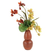 Distinctive Designs Silk Orchids w/ Iris in Washed Rio Vase
