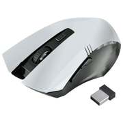 Insten® 1991137 2.4G Wireless Optical 6D Button Game Mouse for Computer PC Laptop, Silver