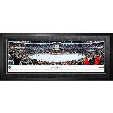 Anaheim Ducks Arena Panorama Framed, 21
