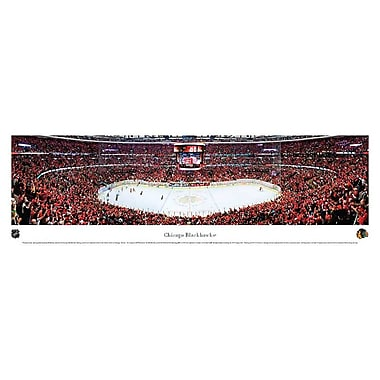 Chicago Blackhawks Panorama Plaque, Arena, 21