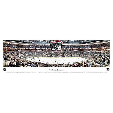 Pittsburgh Penguins Panorama Plaque, Arena, 21