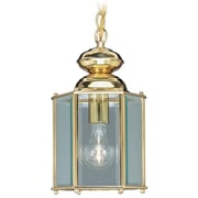 Livex Lighting Basics 1 Light Outdoor Hanging Lantern; Polished Brass