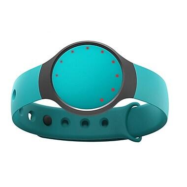 Misfit F00DZ Flash Fitness + Sleep Monitor, 1.12