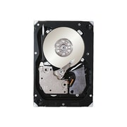 "Seagate® IMSourcing 146 GB SAS (3 Gb/s) 15000 RPM 3 1/2"" Internal Hard Drive (ST3146356SS)"