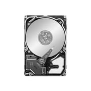 "Seagate-IMSourcing NOB Savvio 10K.3 ST9300603SS 300 GB 2.5"" Internal Hard Drive"