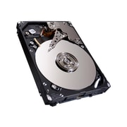 "Seagate® Enterprise ST300MM0006 300GB SAS 6 Gbps 2.5"" Internal Hard Drive"