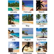 "2016 AT-A-GLANCE® Tropical Escape Horizontal Erasable Wall Planner, 36'' x 24"", Design, (DMWTE8-28)"