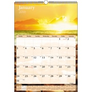 "2016 AT-A-GLANCE® Scenic Wall Calendar, 12"" x 17"", Design, (DMW200-28)"