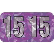 MAP Brand Holographic End-Tab Year Labels, 2015, Violet