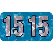 Medical Arts Press® Holographic End-Tab Year Labels, 2015, Blue