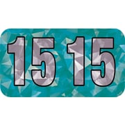 MAP Brand Holographic End-Tab Year Labels, 2015, Aqua