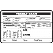 Veterinary Examination Medical Labels, Yearly Exam, White, 2.5 x 4 inch, 500 Labels