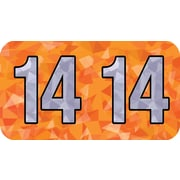 MAP Brand Holographic End-Tab Year Labels, 2014, Orange