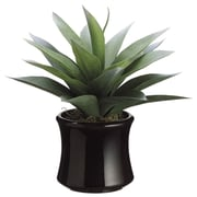 Tori Home Agave Desk Top Plant in Pot