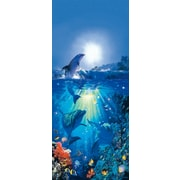 Brewster Home Fashions Ideal Decor Dolphin In The Sun Wall Mural