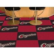 FANMATS NHL - Chicago Blackhawks Team Carpet Tiles; Phoenix Coyotes