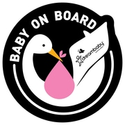 Dreambaby Baby on Board Adhesive Stork Wall Decal (Set of 2); Pink