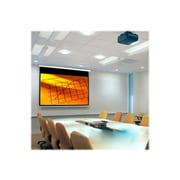 Draper ® AccuScreens ® 800004 Manual Wall/Ceiling Projection Screen, 106""