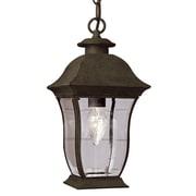 TransGlobe Lighting Outdoor 1 Light Hanging Lantern; Black / 18'' H x 9.25'' W