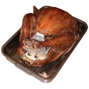 Nifty Home Products Poultry Shield in Stainless Steel