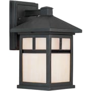 Forte Lighting 1 Light Wall Lantern; Black / 10.5'' H x 6'' W x 7'' D/Incandescent