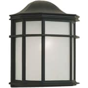 Forte Lighting 1-Light Outdoor Flush Mount; Black