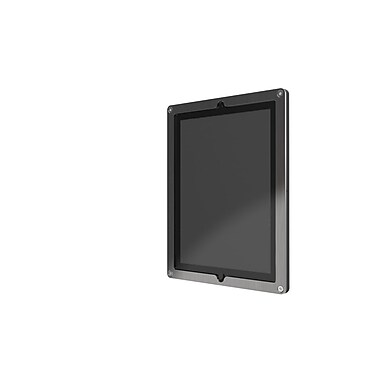 Heckler Design Windfall Frame for iPad 2/3/4, Clear Coat