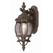 TransGlobe Lighting 1-Light Outdoor Wall Lantern; Black Copper