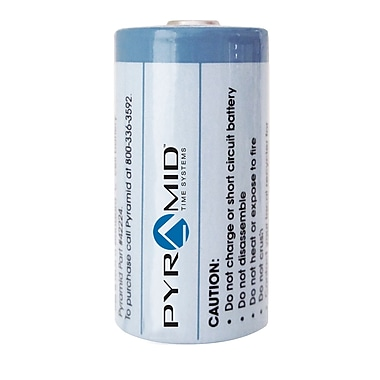 Pyramid™ Duration 42224 3.6V Lithium Battery, Size C