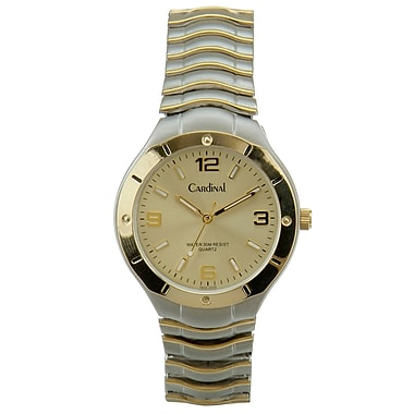 Cardinal 1602 Men's Analog Casual Watch, 2 Tone Expansion Bracelet