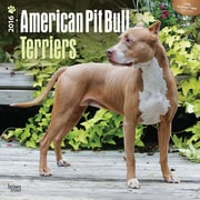 "2016 BrownTrout Publishing Dog Breeds 12"" x 12"" Square American Pit Bull Terriers (9781470000000)"