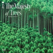 """2016 BrownTrout Publishing Science and Nature 12"""" x 12"""" Square Majesty of Trees, The (9781470000000)"""