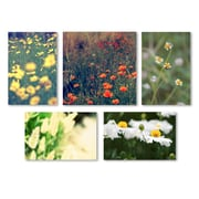Trademark Fine Art Field of Flowers Wall Collection 24 x 24 (WC0005-SET-5)