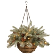 National Tree Co. Frosted Arctic Spruce Hanging Basket