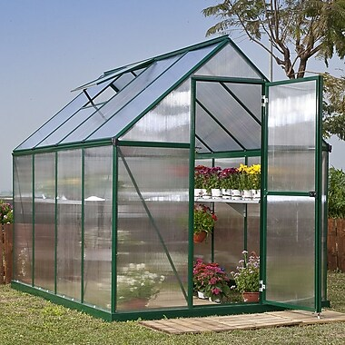 Palram Nature Twin Wall 6 Ft. W x 8 Ft. D Greenhouse; Green