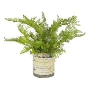 Creative Displays, Inc. Fern French Label Pot