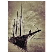 PrestigeArtStudios Pirates Photographic Print