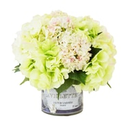 Creative Displays, Inc. Green Hydrangea and Snow Ball Flower in French Label Pot