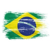 PrestigeArtStudios Brazil Splatter Flag Graphic Art