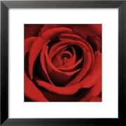 Art Laurent Pinsard 'Romatic Blooming Red Rose' 18 x 18 (3877525)