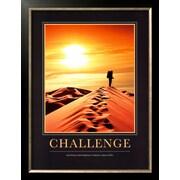 Art 'Challenge' 26 x 20 (5032142)