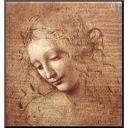 Art.com  Leonardo da Vinci 'Female Head (La Scapigliata), c.1508'  17 x 16 (8092148)