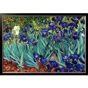 Art Vincent van Gogh 'Irises, Saint-Remy, c.1889' 29 x 41 (8301249)