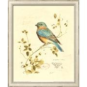 Art Chad Barrett 'Gilded Songbird IV' 13 x 11 (8708664)