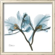 Art.com Albert Koetsier 'Orchids in Blue'  14 x 14 (9370290)