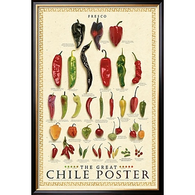 the great chile poster pdf