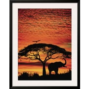 Art.com  'African Sunset'  39 x 31 (10196767)