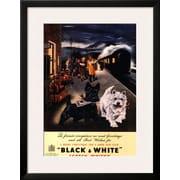 Art 'Black and White Scotch' 32 x 25 (10202339)