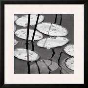 Art David Gray 'Lily Pads, Sunrise' 26 x 26 (10212282)