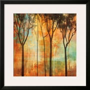 Art Chris Donovan 'Magical Forest II' 28 x 28 (10213064)